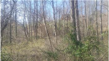 Lot 385 Mystic Star Dr, New Tazewell, TN