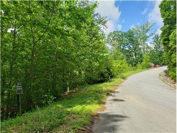 Lot 564 Tortoiseshell Circle, New Tazewell, TN