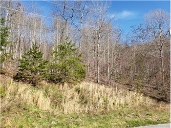 Lot 576 Whistle Valley Rd, New Tazewell, TN