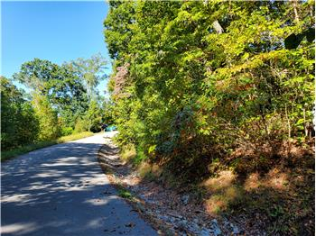 Lot 579 Tortoiseshell Cir, New Tazewell, TN