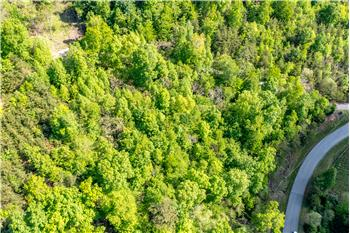 Lot 594 Whistle Valley  Rd, New Tazewell, TN