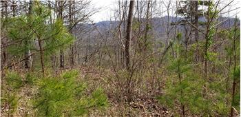 Lot 6 Pounding Mill Overlook, Hayesville, NC