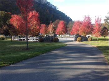 Lot 69, White Rock Trail, Caldwell, WV