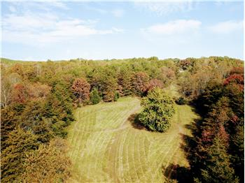 Primary listing photos for listing ID 580308